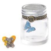 Bailey's Butterfly Jar with Flutter McNibble